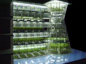 urban-farming-01_eV22M_7071