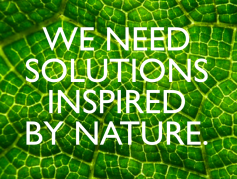solutions inspired by nature