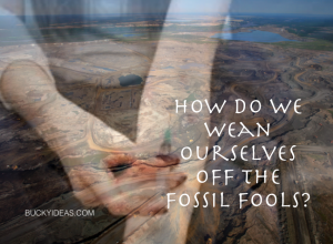 The world is being fossil fooled.